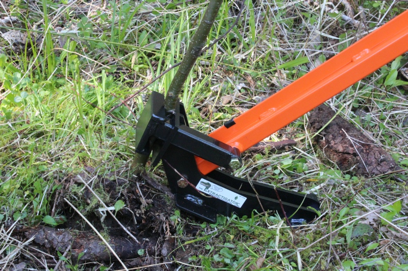 The Extractigator Works Great With Removing Invasive Plants